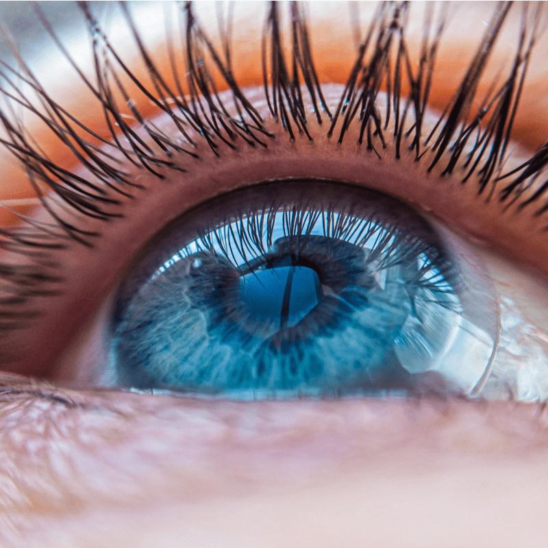 Moters akis su kontaktiniais lęšiais iš arti