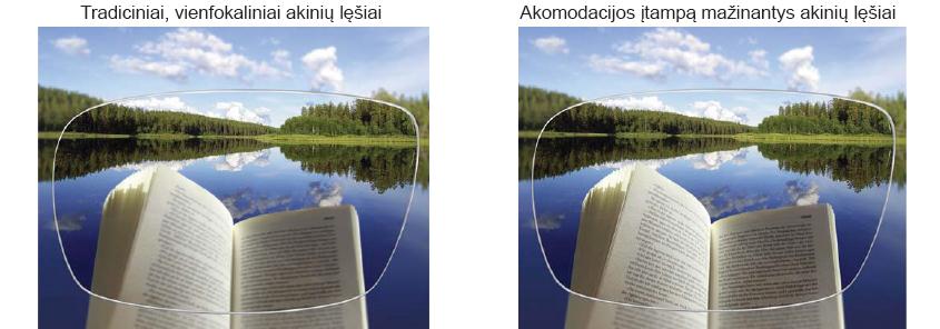 Knygos, vandens ir miško vaizdas matomas per korekcinius akinius